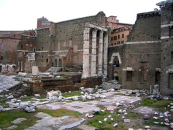 <b>The Forum of Augustus</b>