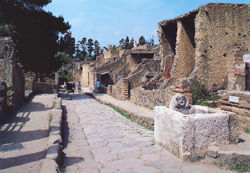 A nice view of the ruins of Herculaneum