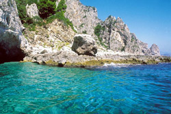 <b>A strip of coast of Capri</b>