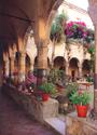 Sorrento walking  tour with TREDYTOURS: Saint Francis Cloister at Sorrento